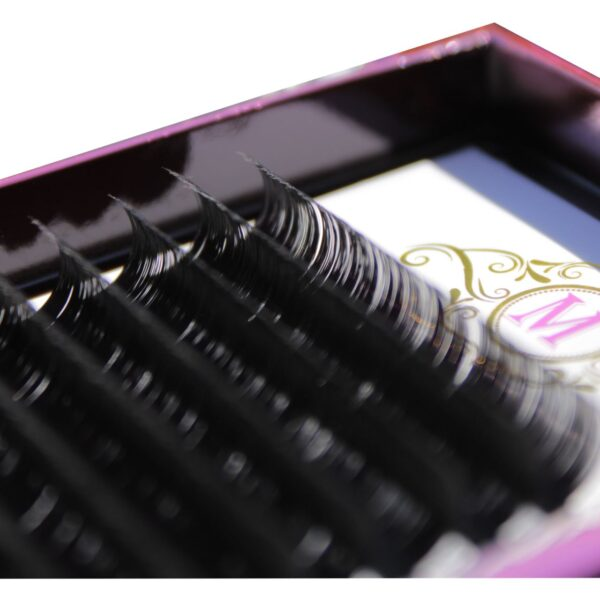 d curl lashes